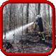 Flur- oder Waldbrand